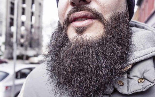 Man with voluminous beard